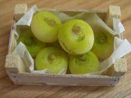 Turnips in box - F246