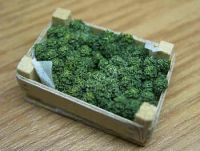 Broccoli in wood box