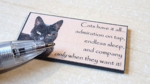 Quotation Wall Plaque - Cat's have it all... - M334