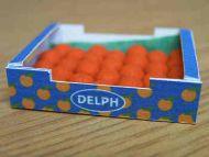 Tangerines in  printed carton - PC10T