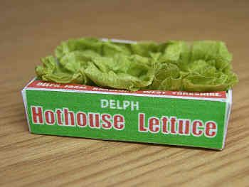 Lettuces in printed carton - PC147H