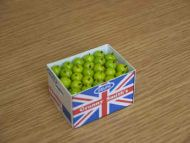 Apples in Printed Carton - PC178