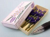 Gladioli in Printed Carton - Purple Gladioli  - PC250PU