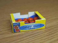 Canary Tomatoes in printed carton - PC4C