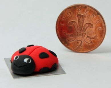 Ladybird design Birthday Cake - CC1
