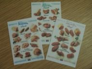 Meat Posters Set of 3 - S461